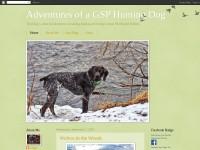 http://gsphuntingdog.blogspot.com
