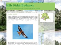 http://hillyfields.blogspot.com/