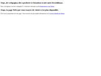 http://users.telenet.be/MDRenaer/