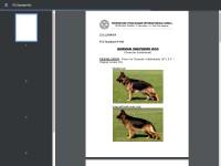 http://www.gsdca-wda.org/documents/pdf/standard/gsd23122010.pdf