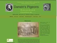 http://darwinspigeons.com/