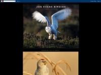 http://jonevansbirding.blogspot.com/
