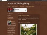 http://moysiesbirdtrips.blogspot.co.uk/