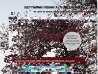 http://www.bettawan.com/