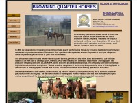http://www.browningquarterhorses.com/