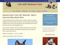 http://www.life-with-siamese-cats.com