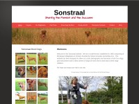 http://www.sonstraal.co.uk
