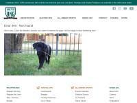 http://www.ukcdogs.com/WebSite.nsf/WebPages/Home