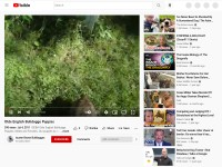 http://www.youtube.com/watch?v=1U6yQSJAGTE