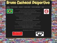 http://brunocachecoldesportivo.webs.com