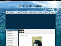 http://ile-de-saluki.chiens-de-france.com/site_eleveur/index.php?LANGUE=2&ID_ELEVEUR=11418&ID_SITE=12836