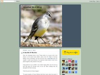 http://anotherbirdblog.blogspot.com/
