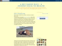 http://apetnannyplus.blogspot.com/2010/04/reiki-is-wonderful-thing.html