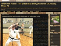 http://arizonatraditionalkarate.blogspot.com/