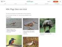 http://dal.hubpages.com/hub/Curlew-Birds-of-Europe