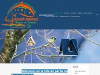 http://goujonmantais.e-monsite.com/