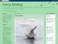 http://kerrybirding.blogspot.co.uk/