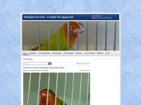 http://lovebirdsrodrigo.webs.com/