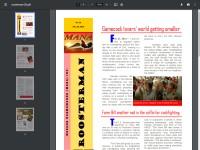 http://manapub.files.wordpress.com/2014/02/roosterman-30.pdf