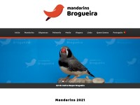 http://mandarinsbrogueira.pt/index.php
