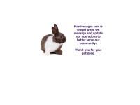 http://martinscages.com/