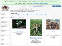 http://mushroomobserver.org/