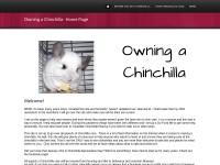 http://owningchinchillas.webs.com/