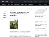 http://phys.org/news/2012-09-wild-bees-champions-food-biodiversity.html