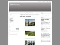 http://rickyhanson.webnode.com/