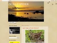 http://scillyspider.blogspot.com/
