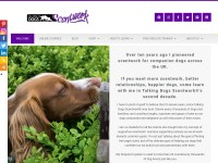 http://talkingdogsscentwork.co.uk/Talking_Dogs_Scentwork/About_us.html