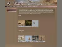 http://tatzpit.com/Site/en/pages/homePage.asp