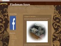 http://theflashmans.blogspot.com