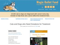 http://themagicbulletfund.org/