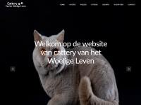 http://vanhetwoeligeleven.nl/
