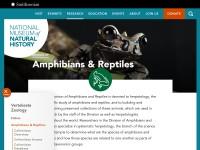http://vertebrates.si.edu/herps/index.html
