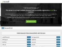 http://www.1001kinderfeestjes.nl/