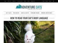 http://www.adventurecats.org/pawsome-reads/read-cats-body-language/