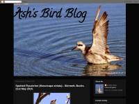 http://www.ashsbirdblog.blogspot.com/