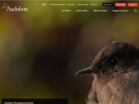 http://www.audubon.org/