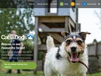 http://www.bathcatsanddogshome.org.uk/