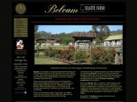 http://www.belcam.com.au