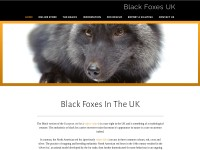 http://www.blackfoxes.co.uk/