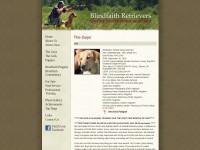 http://www.blindfaithretrievers.com/guys/