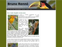 http://www.brunoornitologia.webs.com