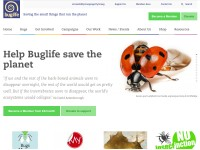 http://www.buglife.org.uk/