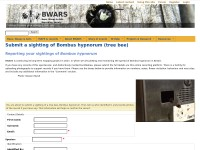 http://www.bwars.com/index.php?q=submit-bombus-hypnorum-sighting