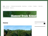 http://www.diamondbrook.com