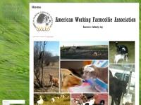 http://www.farmcollie.com