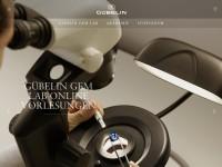 http://www.gubelingemlab.ch